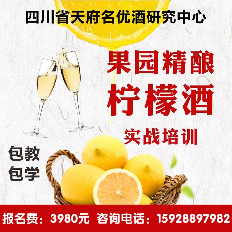 檸檬果酒技術培訓 檸檬酒 發酵果酒技術 專家酒廠教學